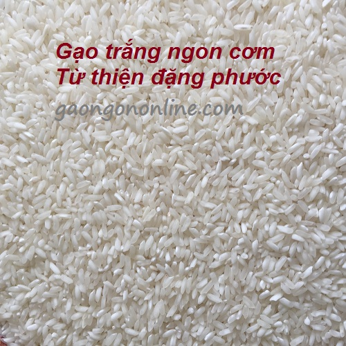 bán gạo từ thiện giá rẻ
