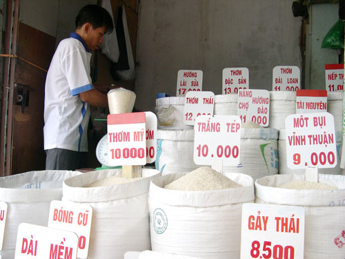 giá gạo