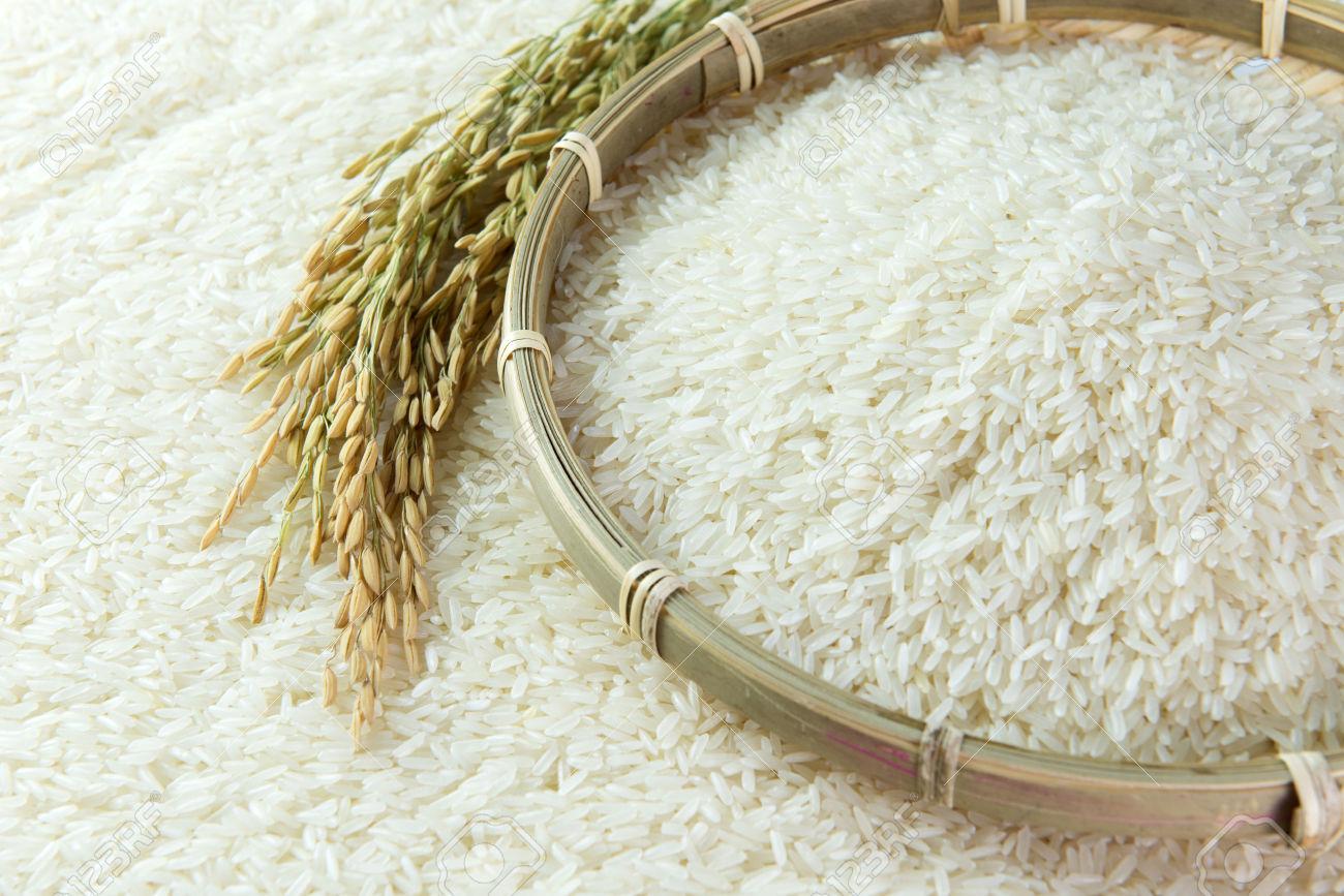 gạo ngon giá rẻ