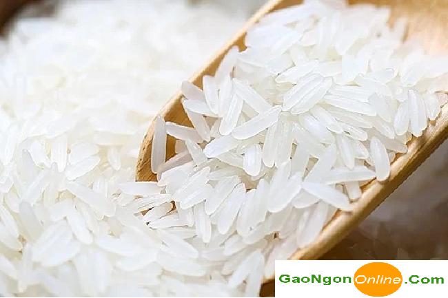 Gạo Lài Miên giá bao nhiêu