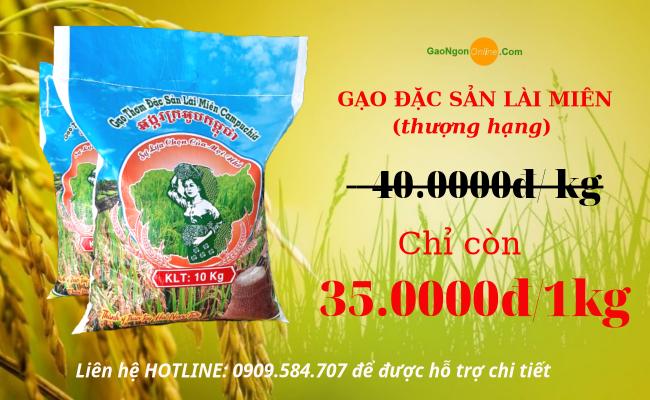 Gạo lài miền campuchia | Túi 10kg | Gạo tuyển chọn tại Gạo Ngon Online