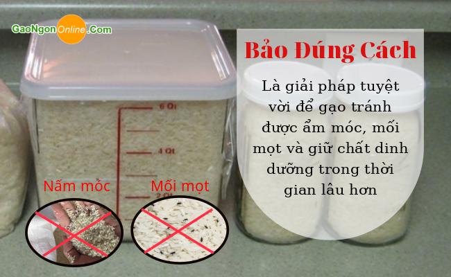 Cách bảo quản gạo lài miên luôn thơm ngon giàu dinh dưỡng trong thời gian dài