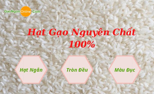 Gạo Tài Nguyên thật sự là loại gạo nở xốp mềm chứ không phải loại gạo dẻo