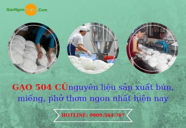 Phân phối gạo 504 cũ nguyên làm bún, miếng, phở chất lượng tại HCM
