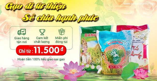 Gạo ngon giá rẻ phục vụ các hoạt động từ thiện rằm tháng 7, lễ Tết hàng năm - Gạo Ngon Online