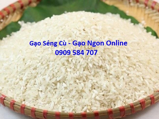 gạo séng cù tphcm