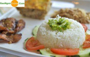 mua gạo 504 tại TPHCM