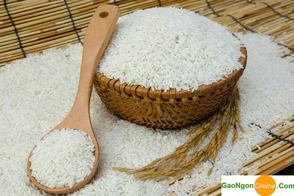 cung cấp gạo sản xuất bún 2