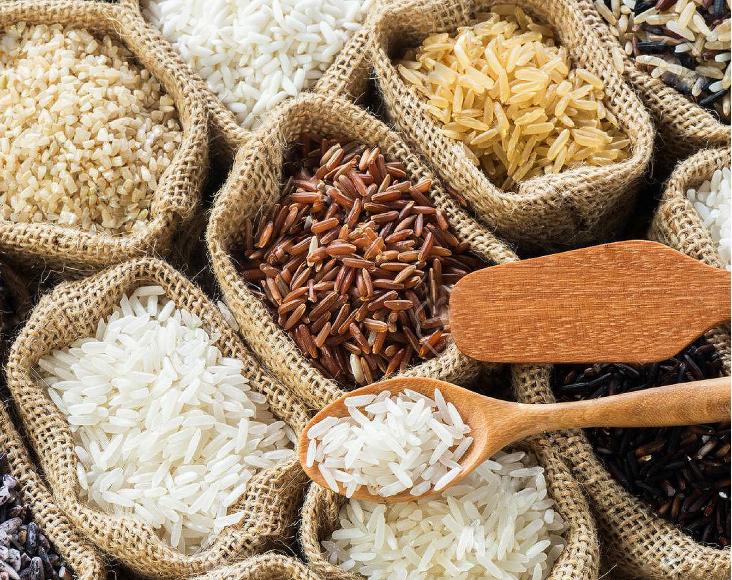hỗ trợ mở đại lý gạo tại Tphcm