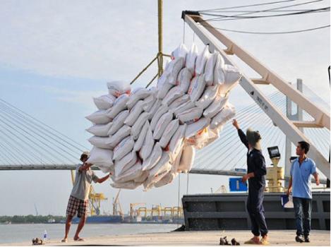 Mở đại lý gạo bao lâu thì hoàn vốn