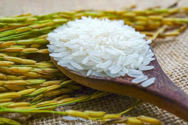 gạo ngon