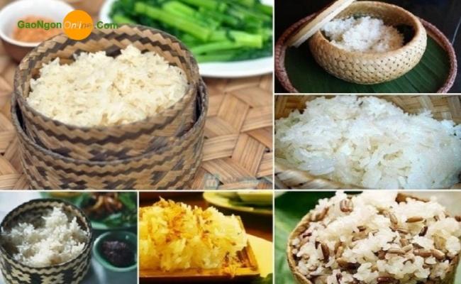 Gạo nếp thái nguyên liệu số 01 để chế biến bánh chuối, Xôi nướng ống tre, Xôi sầu riêng, Chuối chiên dừa phổ biến nhất hiện nay