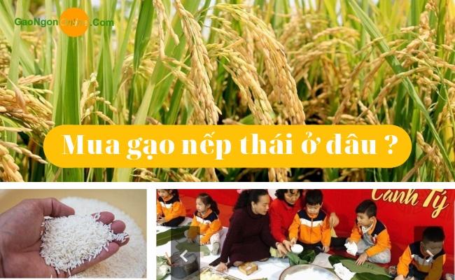 Gạo Ngon Online điểm cung cấp gạo nếp thái lan chất lượng tại Hồ Chí Minh