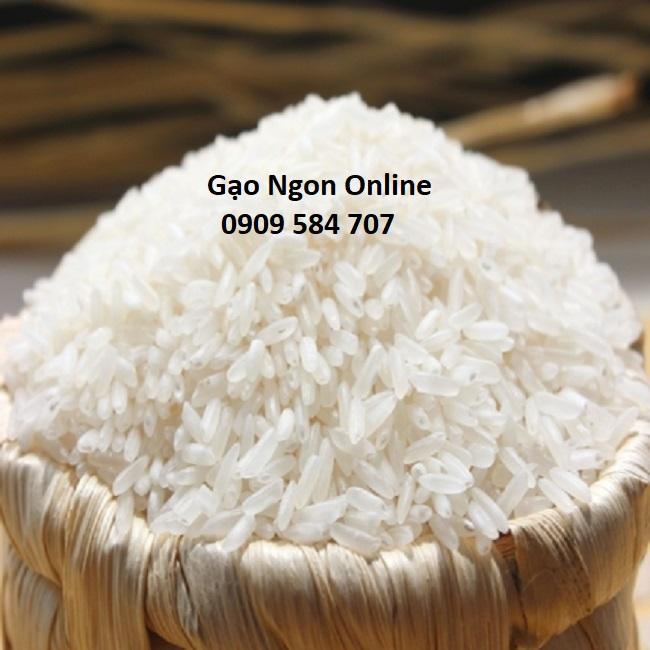 gạo thơm Mỹ giá bao nhiêu