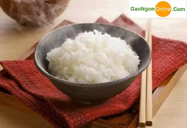 Cung cấp gạo nhật japonica