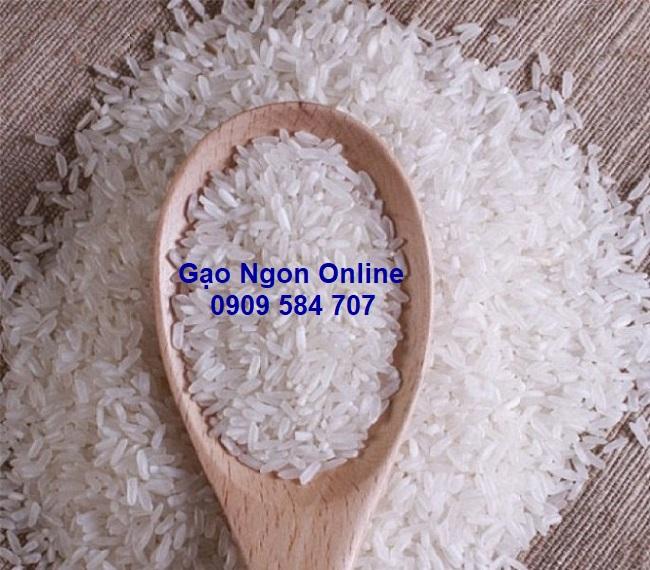 Gạo st25 ngon nhất thế giới
