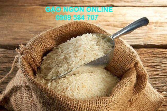 Mua gạo Đài Loan sữa ở đâu