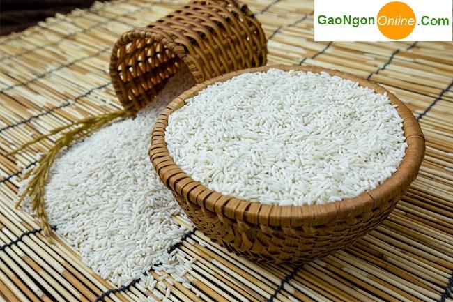 Mua Gạo Nàng Thơm Chợ Đào túi 5kg ở đâu