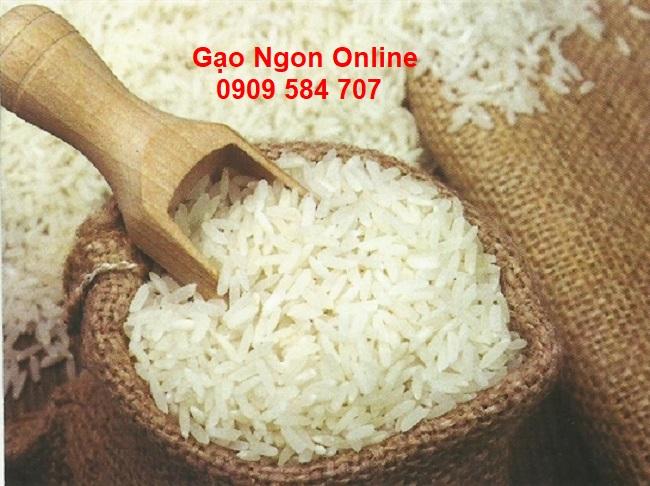 Nơi bán Gạo Nàng Thơm Chợ Đào túi 5kg giá rẻ tại tphcm