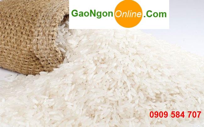 Mua gạo Nhật Bản giá rẻ ở đâu