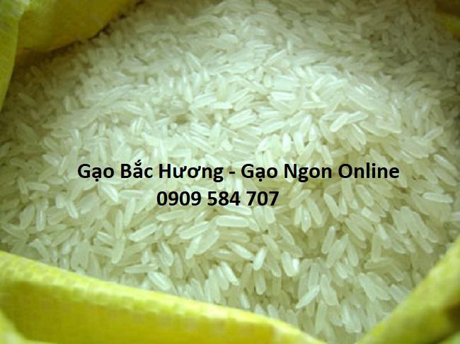 Gạo Bắc Hương giá rẻ tại tphcm
