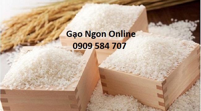Mua gạo Sơ ri mùa tết giá rẻ tại tphcm