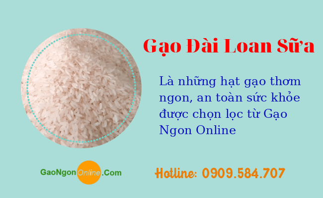 Gạo đài loan sữa đặc biệt | Gạo đặc sản (túi 5kg) | Gạo Sạch Online